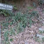 小文字山登山道入口の画像