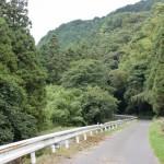 清瀧橋からの林道の画像
