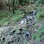 西山登山口の先にある砂防ダム横の登山道の画像