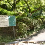 宮地山自然歩道入口の画像