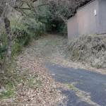 稲荷三柱神社から九重インターへの小道の画像