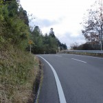 九重インター手前の高速横の車道の画像