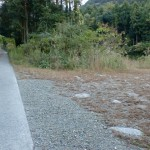 河原谷登山道へ続く林道の駐車スペース