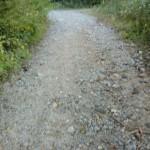河原谷登山道へ続く未舗装の林道の画像