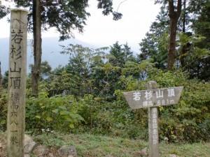 若杉山頂の画像