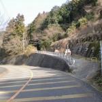 六ヶ岳鞍手登山口の画像