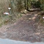 龍王山青年の家コース登山口の画像