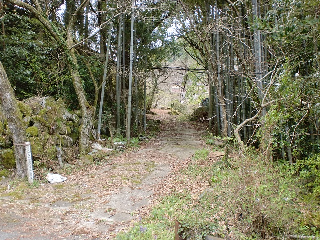 三国山の登山道入口となる林道山口線入口の画像