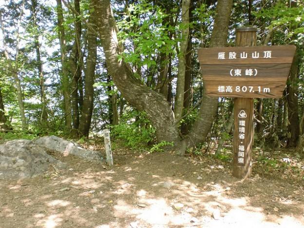 雁股山(東峰)山頂の画像
