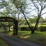 ビハ公園キャンプ場(熊本県あさぎり町)の画像