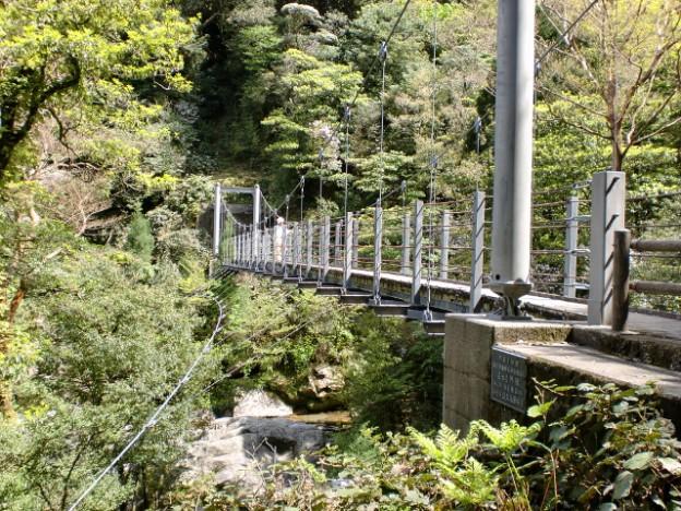 白谷雲水峡のさつき吊橋の画像