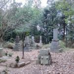 柴田古城跡の画像