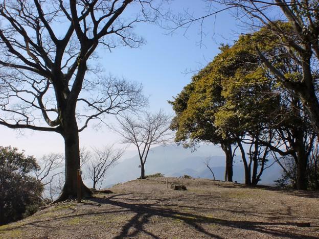 笠置山山頂(笠木城址)の画像