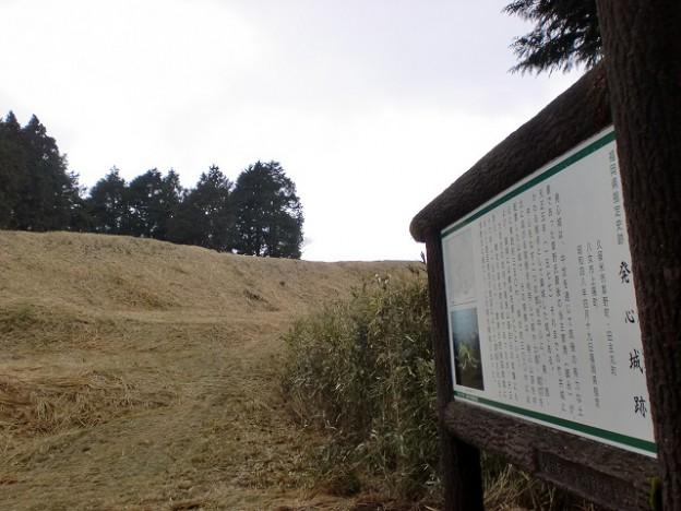 発心城跡(発心山頂)の画像