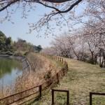 日ノ沢池の遊歩道入口の画像