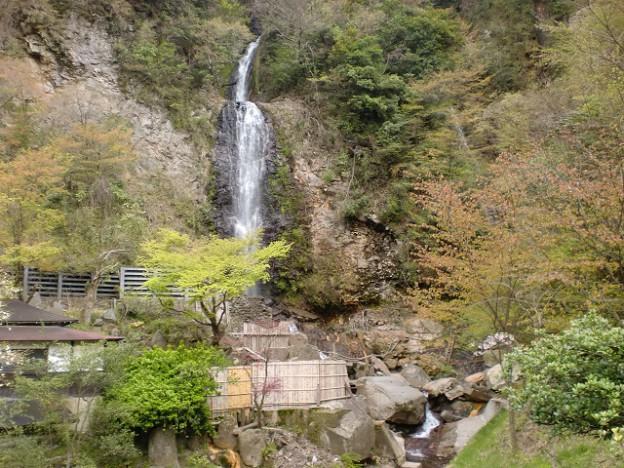垂玉温泉の入口にある金龍の滝の画像