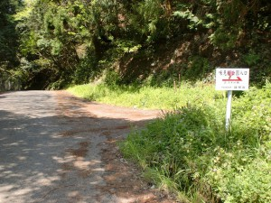 県道64号線の旧道から味見桜公園への林道分岐の画像