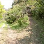 味見桜公園の障子ヶ岳登山道入口の画像