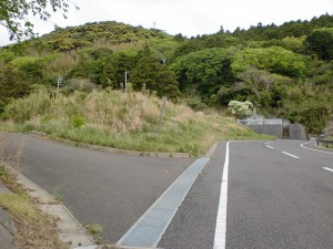 権現山入口手前の脇道に入る個所の画像