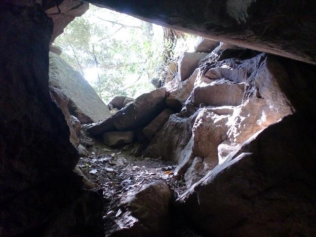 針の耳(桧原山登山道)の画像