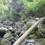 砂防ダムから50mほど谷を上ったところにある仙人峡(西京橋)、天の岩戸を示す標識の画像
