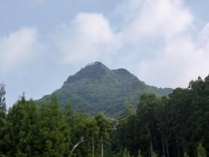 樋桶山登山口への林道途中から見る樋桶山の画像