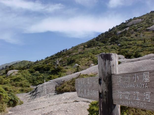 屋久島縦走路の道標の画像
