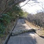 長垂山の登り口の画像