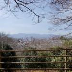 今山中腹の展望所からの眺望の画像