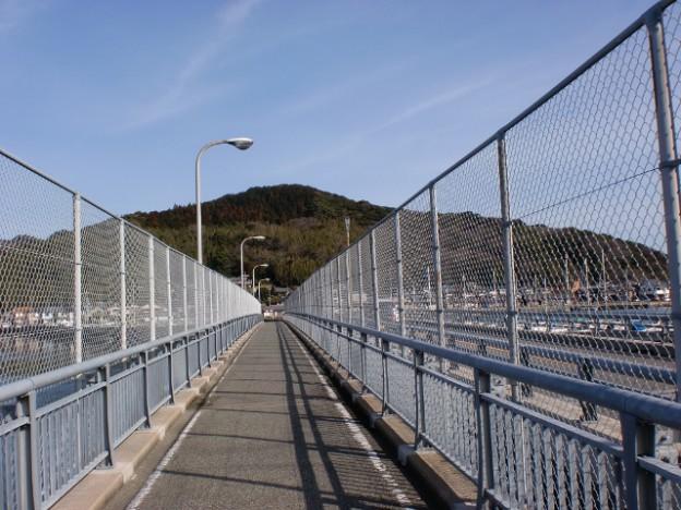 今津橋から見る浜崎山の画像