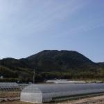 大原橋バス停(昭和バス)付近から見る柑子岳の画像