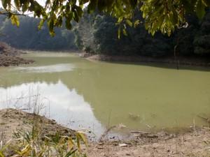 ヤンバラ池(カンバラ池?)の画像