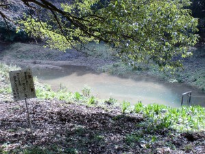 ヤンバラ池から10分ほど下った場所にあるため池の画像
