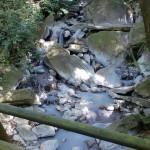 霧島最古の岩風呂のわきを流れる川の画像