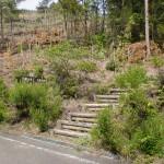 白岳山頂への登山道入口(天草・観海アルプス)の画像