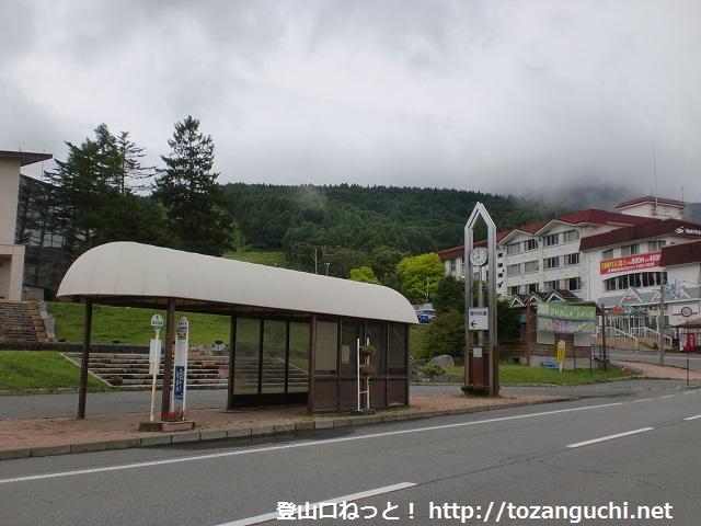 八ヶ岳の登山口 蓼科牧場(白樺高原)にバスでアクセスする方法