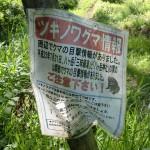 観音平への登山道入口に設置してある熊注意の張り紙の画像