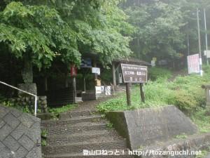 夜叉神峠の登山道入口