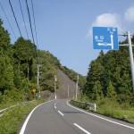 鋸山トンネル方面への道から県道655号線への分岐地点の画像