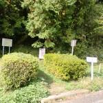 鋸山(田原山)登山道入口の画像