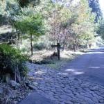 旧千燈寺跡入口(不動山登山口)の画像
