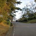 志高湖畔バス停(亀の井バス)の画像