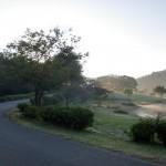 志高湖畔の遊歩道の画像