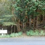 鷹巣岳・小表山登山口の画像