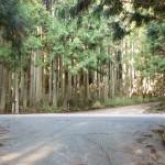 九重飯田南部地域開発農道からと花牟礼山登山口への入口の画像