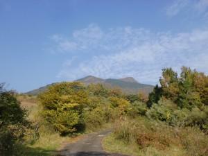 登山道から見る花牟礼山の画像
