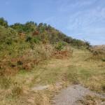 花牟礼山登山道の取付点の画像