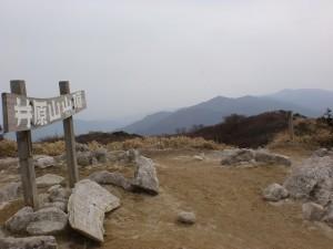 井原山山頂の画像