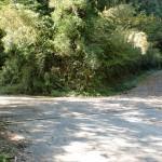冠山の登山口となる旧永慶寺跡前の林道分岐地点の画像