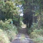 崩平山登山口に続く林道の入口の画像